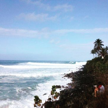I just got sent this from @micahlester  of waimea bay hawaii. It looks a bit big to me but he's getting out there.