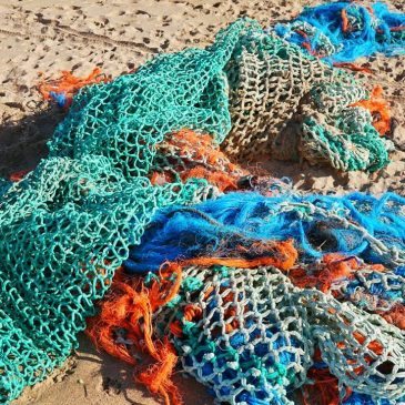 Large tangle of netting on the high tide line at Constantine bay. Does anyone know how to get this removed???
