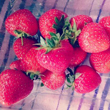 Best strawberries ever @cornishfoodbox