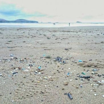 Plastic tide line.