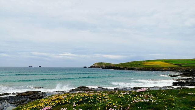 From the serenity at the beach you wouldn't believe the chaos on the roads. Is it too late for a @kernowking_ guide to driving in Cornwall in time for the #summer