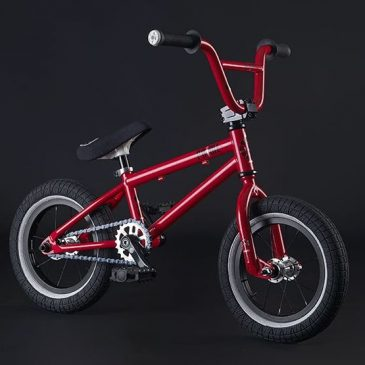 Saw one of these today. Anyone have any idea where to get one #wethepeople 12inch Prime bmx