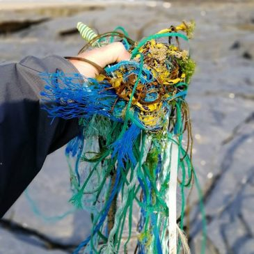 Lots of fishing gear on the beach at the moment. #2minutebeachclean