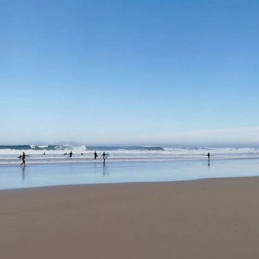 Low tide dredge