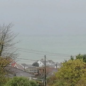 Surf is looking pretty good and I'm at home waiting for the builders.