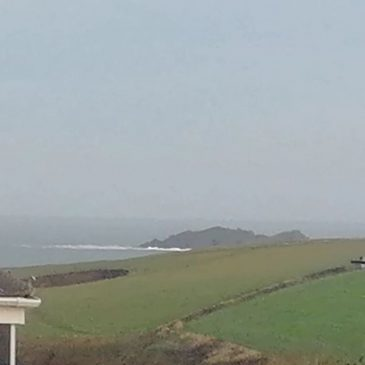 Bit of swell out there still